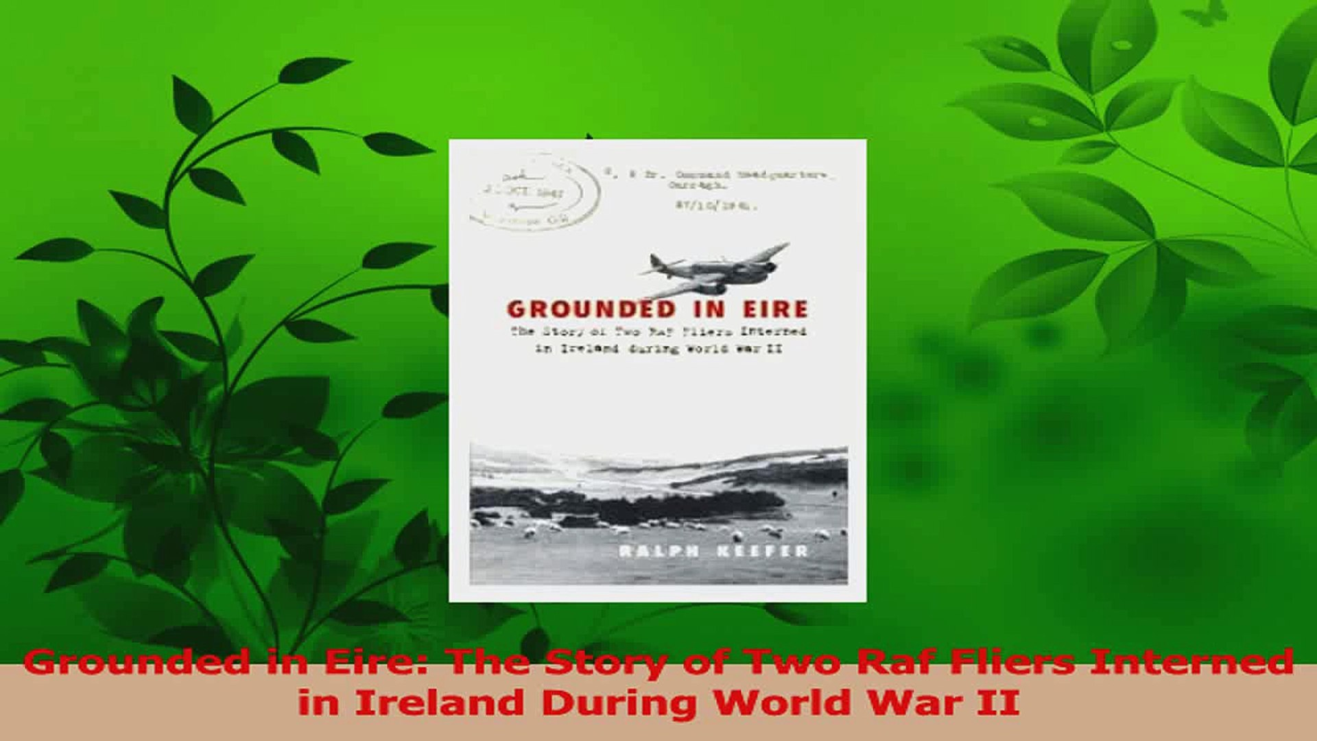 Read  Grounded in Eire The Story of Two Raf Fliers Interned in Ireland During World War II PDF Onlin