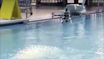 Ce drone volant peut plonger et nager dans l'eau