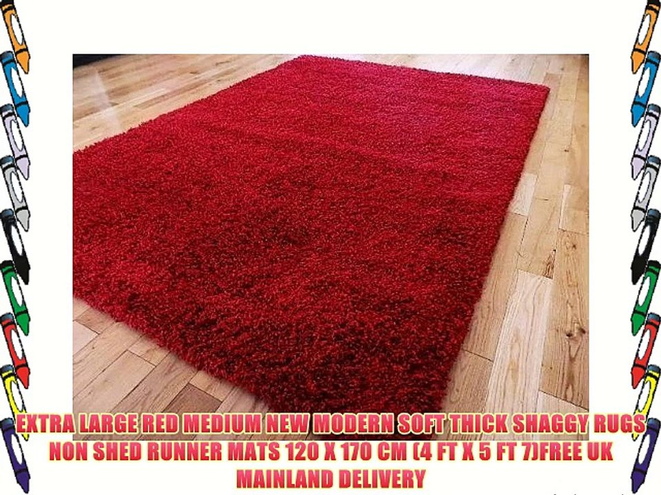 Modern Soft Thick Shaggy Rugs Non Shed