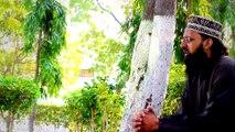 Hum Madinay Say Allah Hafiz Muhammad Ali Chishty 2016