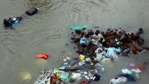 Ce qu'une chienne fait pour ses chiots bloqués par une inondation est incroyable