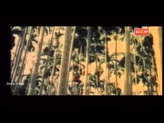 RettaikulalThuppaki  HD full movie