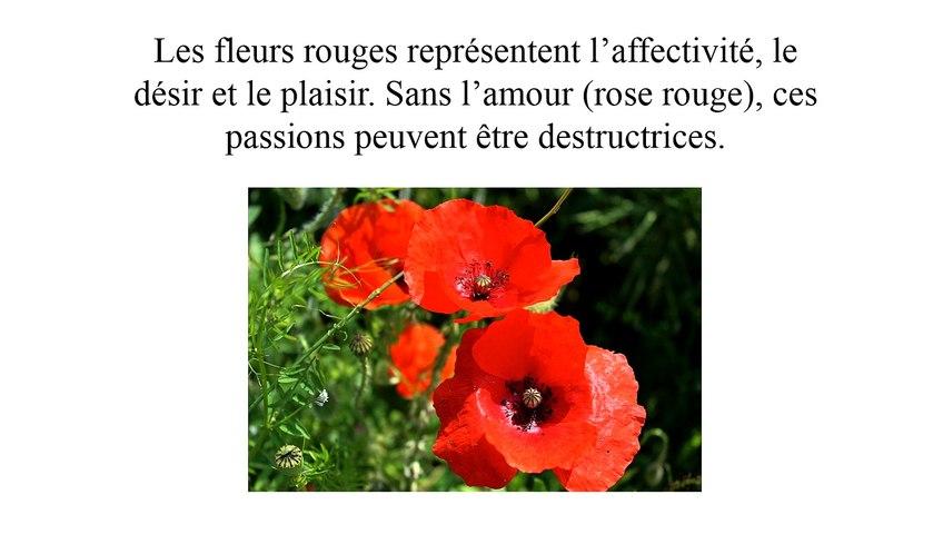 Nous sommes un bouquet de fleurs