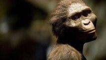 PBS Nova ✔ Becoming Human - Episode 1 : First Steps Homo Sapiens