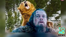 Bear-rape movie? Drudge Report makes strange claim about DiCaprios movie The Revenant - TomoNews