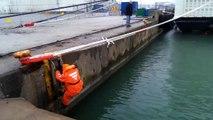 Un chat est sauvé des hélices d'un bateau par un homme courageux
