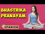 Bhastrika Pranayama | Yoga para principiantes | Yoga Asana For Heart & Tips | About Yoga in Spanish