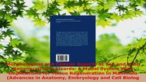 Read  Morphological and Cellular Aspects of Tail and Limb Regeneration in Lizards A Model Ebook Free