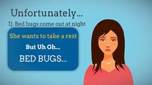We Clean Bed Bugs - Exterminator of Bed Bugs Canada
