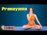 Pranayama For Sex - Build Sexual Drive - Treatment, Tips & Cure in Tamil