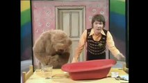 What Sinks & What Floats Experiment For Kids! Rainbow the Childrens TV Show