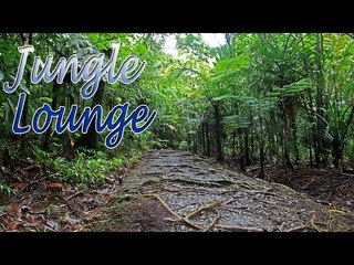 Music For Yoga - Jungle Lounge Sound Music For Relaxation, Meditation, Stress Relief