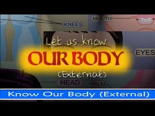 Let Us Know Our Body (External) - Fun And Learn Series in English