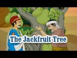Akbar And Birbal - The Jackfruit Tree - Animated Stories For Kids