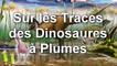 Post Scriptum 23 - Sur les Traces des Dinosaures à Plumes