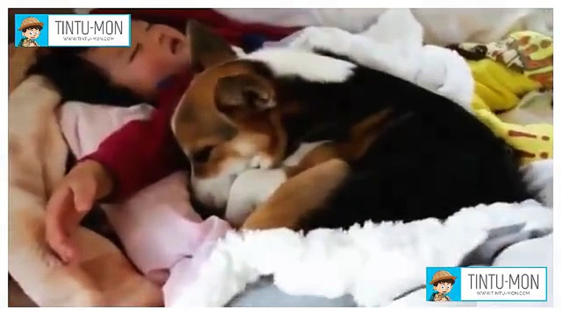 Cute friends forever amazing video