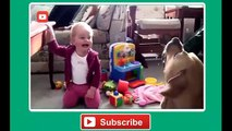 Babies Laughing at Funny Pets Baby Laughing at Funniest Animals Compilation 2014