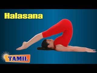 Halasana For Beginners - Exercise For Body Toning - Treatment, Tips & Cure in Tamil