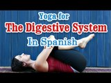 Exercise For Digestive System | Improve Digestive Disorders | Yoga In Spanish