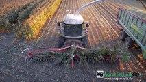 Maishäckseln EXTREM   John Deere   Fendt   Case IH   Traktoren im Einsatz   AgrartechnikHD