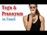 Yoga Pranayam - Various Asanas and Breathing Exercise in Tamil