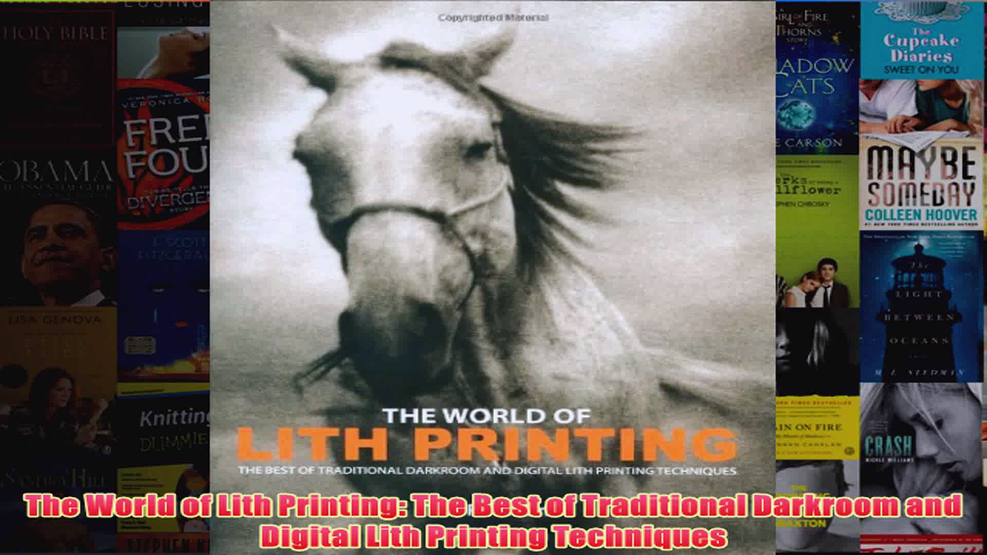 The World of Lith Printing The Best of Traditional Darkroom and Digital Lith Printing
