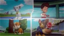 La Patrulla Canina S02E09 Pups and the Big Freeze - Pups Save a Basketball Game 720p WEBRip x264 AAC