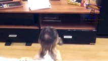 Cute puppies barking and talking - Funny dog compilation(014000-664659)