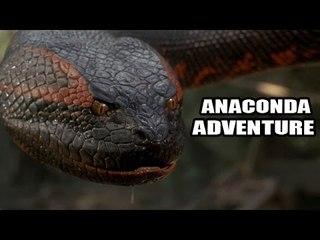 """""""Anakonda Adventure"""" Full Telugu Dubbed Movie [HD]"""
