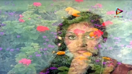 Amavasya Chandrudu Back to Back Video Songs || Kamal Haasan, Madhavi