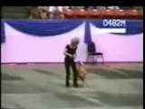 Danse kabyle concours Dance dog USA