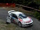 Rallye du Pays Viganais 2007.