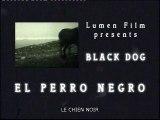 El Perro Negro : histoires de la guerre civile d'Espagne