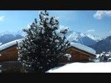 Un feu de cheminée dans un chalet sous la neige ambiance cheminée : Des vacances au coin du feu ?