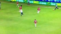 Jesse Lingard amazing Goal - Newcastle United 0-2 Manchester United (12/01/2016)