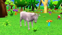 Animals Sounds For Children Learn Sounds Of Zoo Animals For Children Kids And Babies