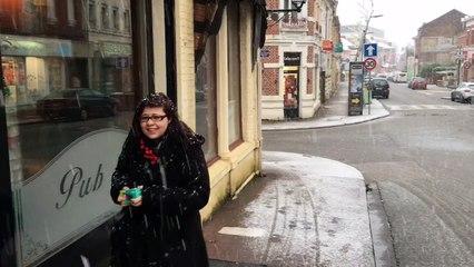 Neige à Fourmies janvier 2016