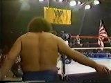 Andre the Giant & Ivan Putski vs Mr Fuji & Tiger Chung Lee   Championship Wrestling Feb 11th, 1984