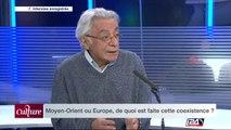 """""""On a cru que les immigrés s'intégreraient et deviendraient des petits français et cette immigration n'existe plus"""""""
