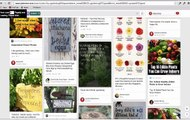 Pinterest Search - Niche Research Using Power of Repins