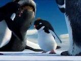 Punjabi Totay - Penguins Da ShugalPunjabi Totay hahaha funny video funny clips tezabi totay