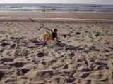 Jasperdekloet tests his new naish shockwave 7m2 kiteboarding