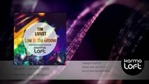 Low In The Groove | Tim Livvdt
