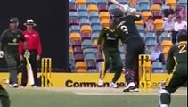 Muhammad Asif 58 Wickets Collection - Cricket Highlights HD. Rare cricket video