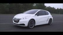 Prestaciones del Peugeot 208 Hybrid FE