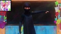 Burka avenger cartoons (Beautiful  MSG of burka avenger)