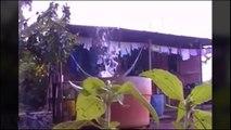 Видео приколы Ютуб Лучшее Самое смешное за январь Видео приколы Ютуб