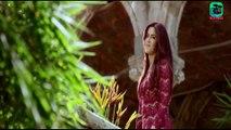Fitoor   Official Trailer   HD 1080p   Aditya Roy Kapur-Katrina Kaif   Latest Bollywood Movie Trailer 2016   Maxpluss Total   Latest Songs