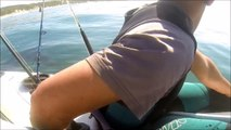 Kayakers Encounter Curious Shark | Close Encounters