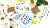 Sanjay and Craig | 'Wild Buds' Behind the Scenes Animatic |